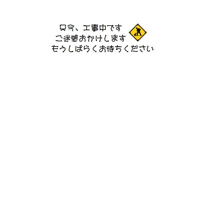 工事中.JPG